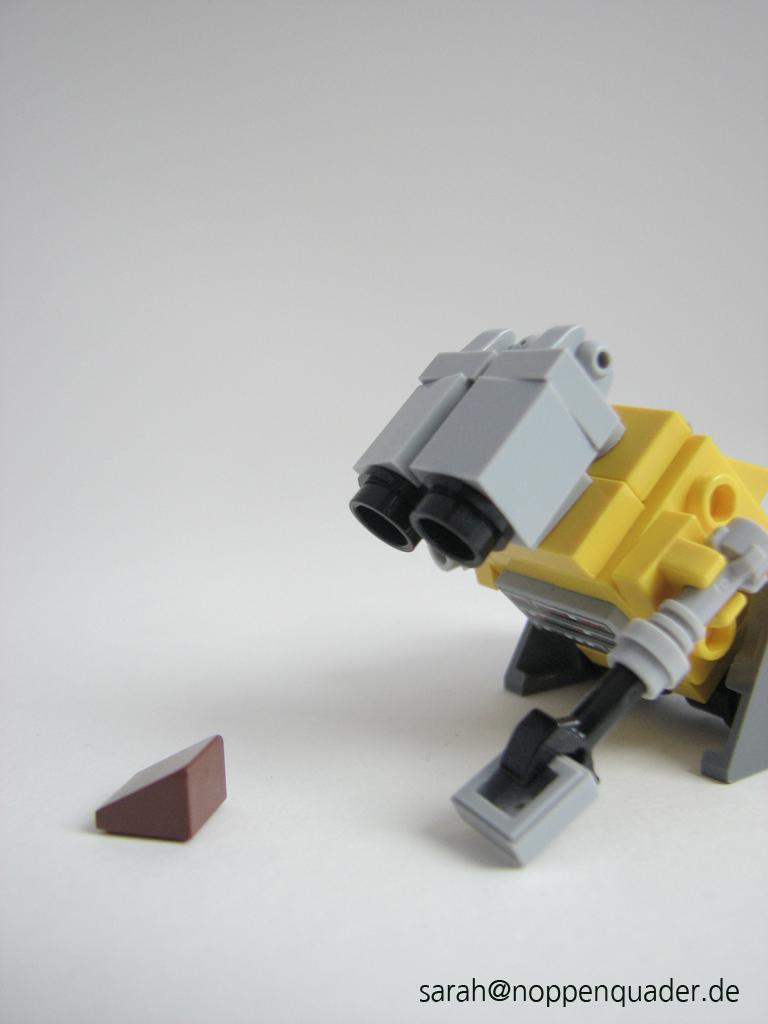 Wall-e und Kakerlake