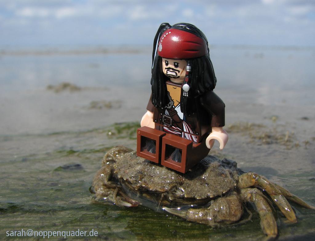 Lego Minifigure Jack Sparrow sitzt im Watt auf dem Rücken einer Krabbe. Das Wasser ist nur 1cm hoch, im Hintergrund ist das Watt und der Horizont zu sehen.