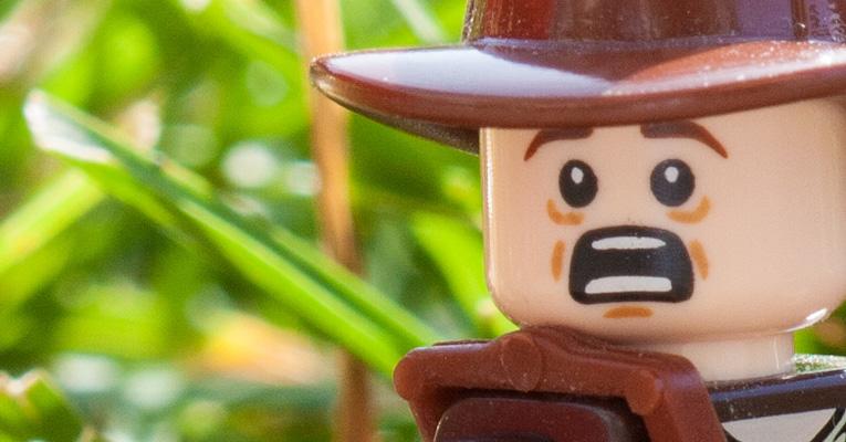 Indiana Jones im Garten des Todes