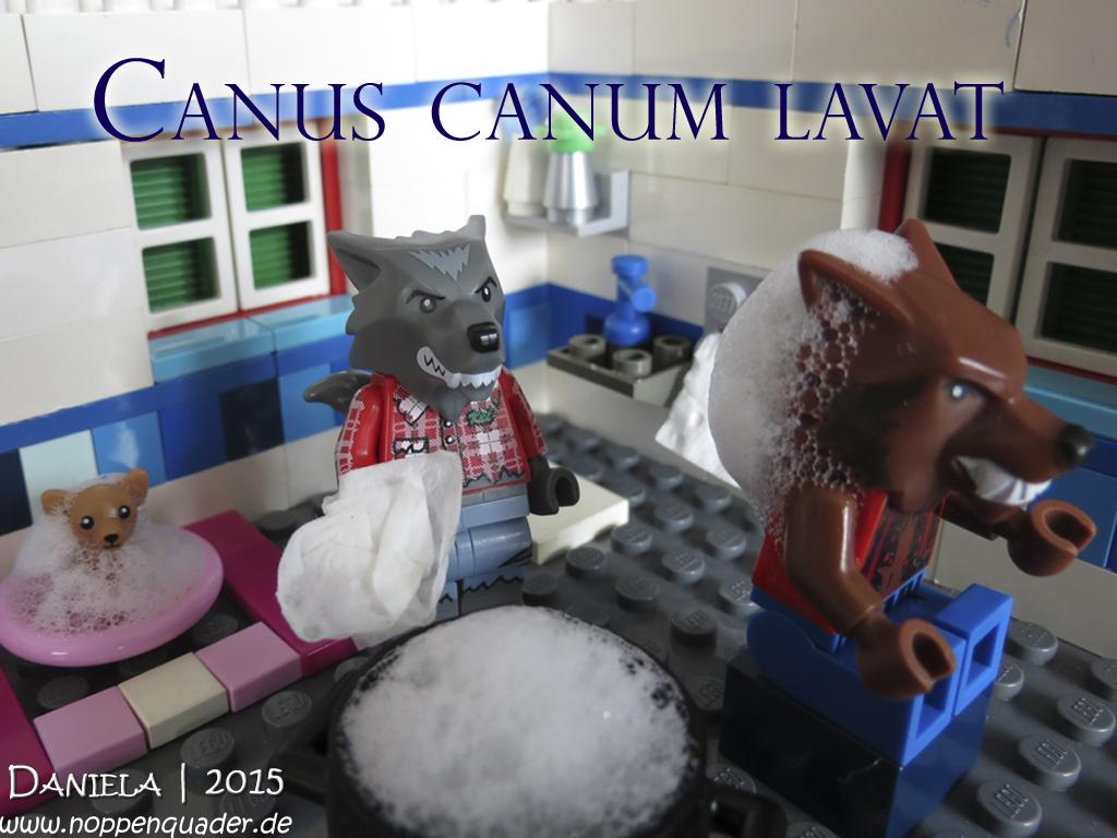 2015-12-03 Canus