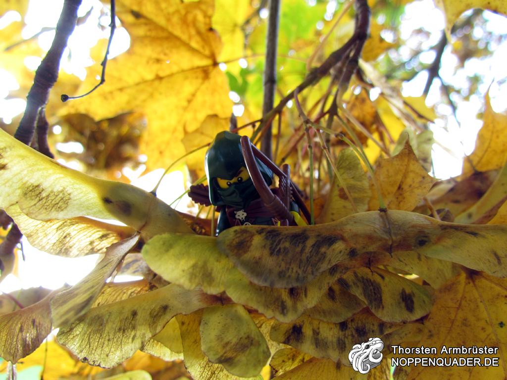 maple ahorn baum scout rogue minifig späher blätter wald woods lego noppenquader minifig moc schütze