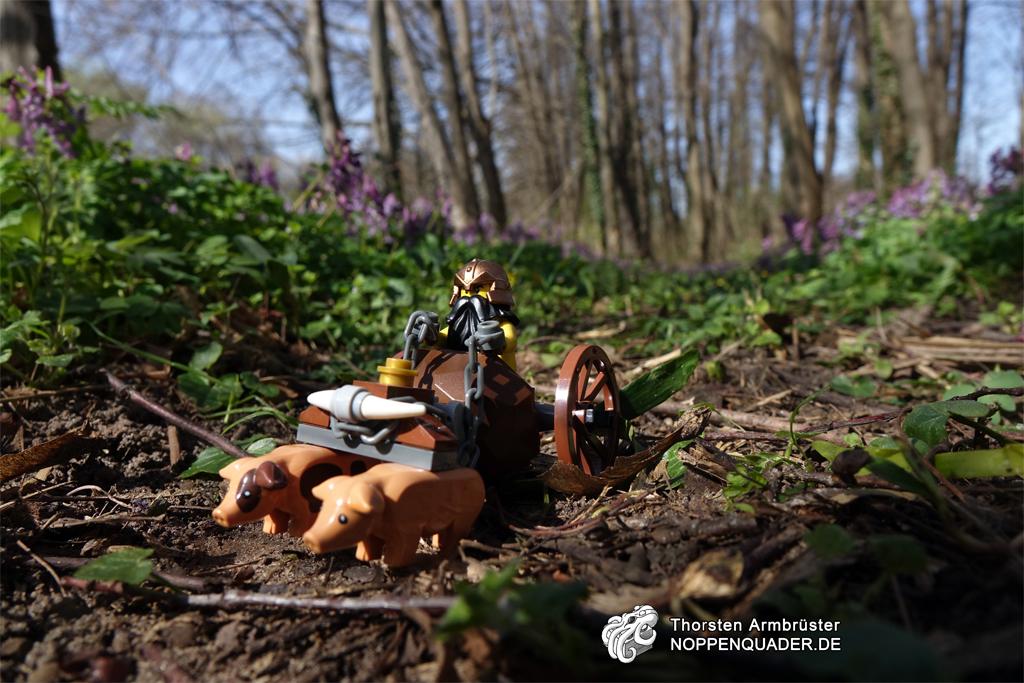 lego moc, pig dwarf schwein zwerg wald woods rennen rennwagen race noppenqiader minifig